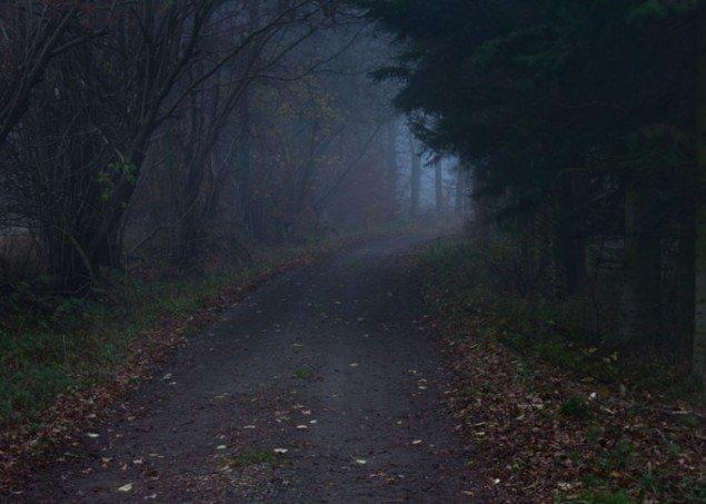 Per Bak Jensen: The Road, 2013.