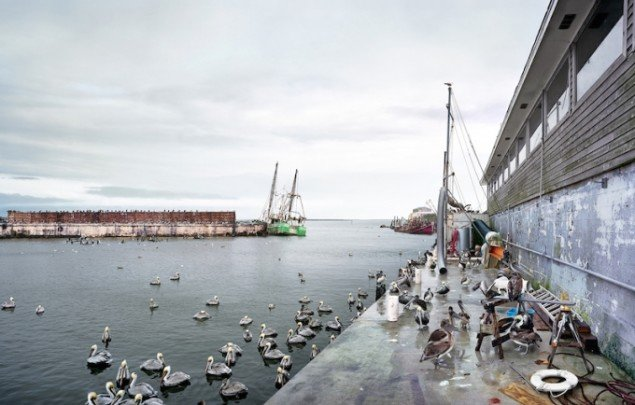 Thomas Bangsted: Fisherman's Wharf, 2009-2012