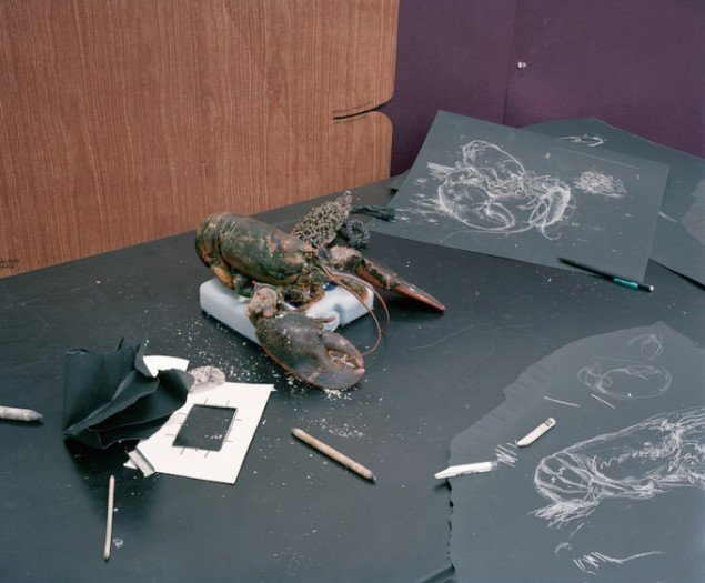 Thomas Bangsted: Lobster Study, 2007