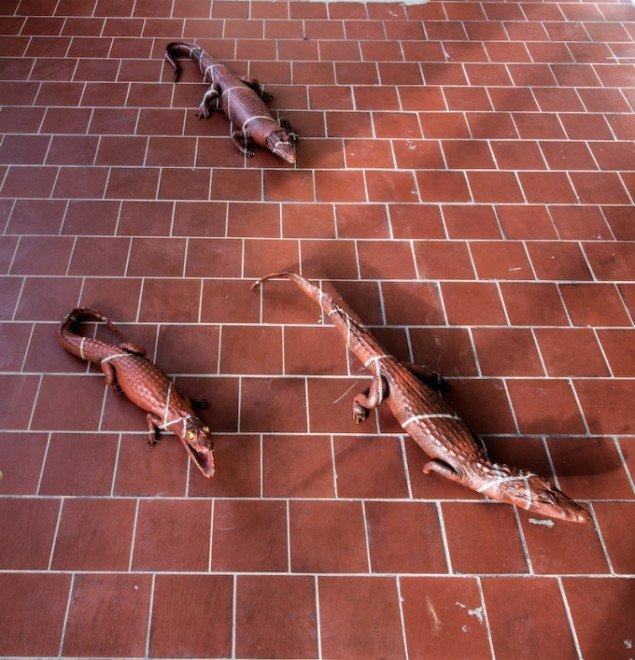 Hesselholdt & Mejlvang: Camouflaged Alligators, 2015. Foto: Niels Fabæk