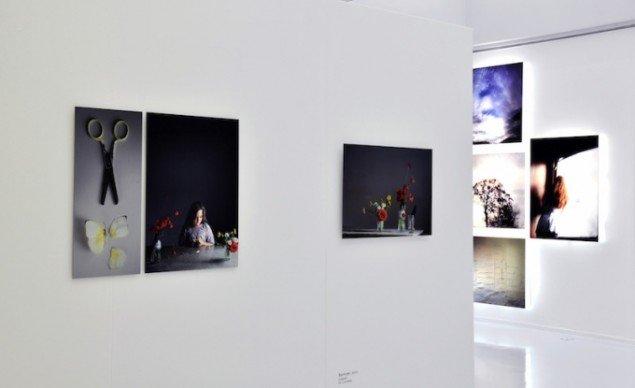 Installationsview fra SOMMERFUGLESAKSEN, 2015. Foto: Randers Kunstmuseum