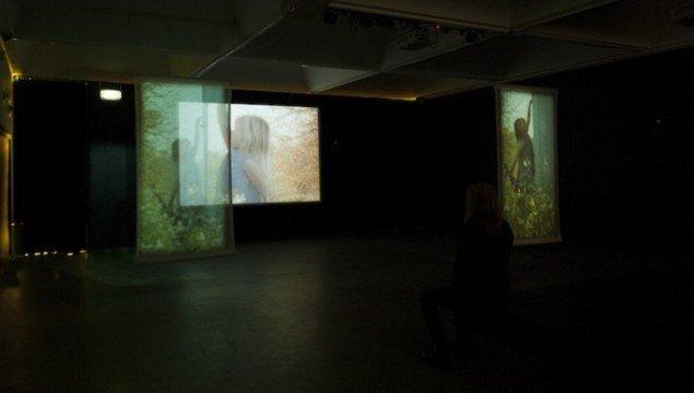 Installationsview fra SOMMERFUGLESAKSEN, 2015. Foto: Maj-Britt Boa
