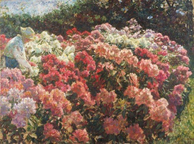 Laurits Tuxen: Rhododendron i Dagminnes have, Skagen, 1917. Skagens Museum. Udstillingsview