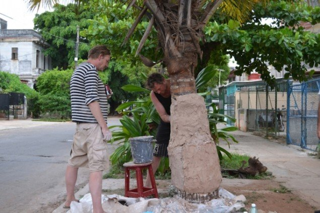 Procesbillede: Afstøbning af et palmetræ, Anders Brinch og Jon Stahn. Foto: Marie Kirkegaard