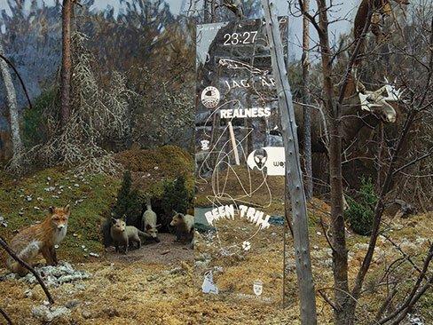 Ilja Karilampi: Jag Är Jaguar, 2014, Installationsview