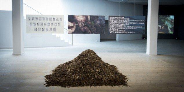 AURA, Anna Tsing og Henning Knudsen: Landscape Change and Fungi Histories, 2013 - work in progres. Foto: Kunsthal Aarhus