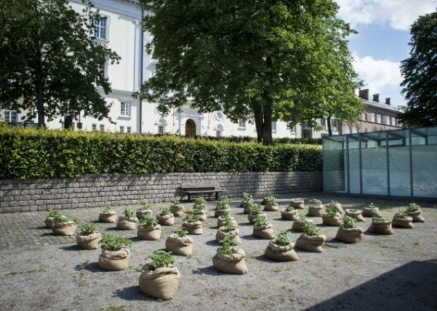 Åsa Sonjasdotter: Between Plants and Politics, 2015. Foto: Kunsthal Aarhus