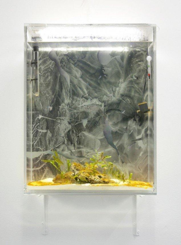 Knuckle Soup, 2014. Akryl og akvarel på papir i akrylakvarium med vandelementer og Peacock Mantis Shrimp. Foto: Miriam Nielsen