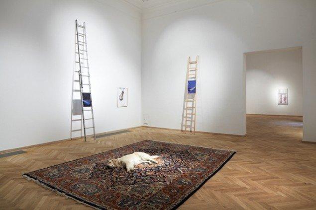 Nina Beier: Tragedy, 2011. Foto: Anders Sune Berg
