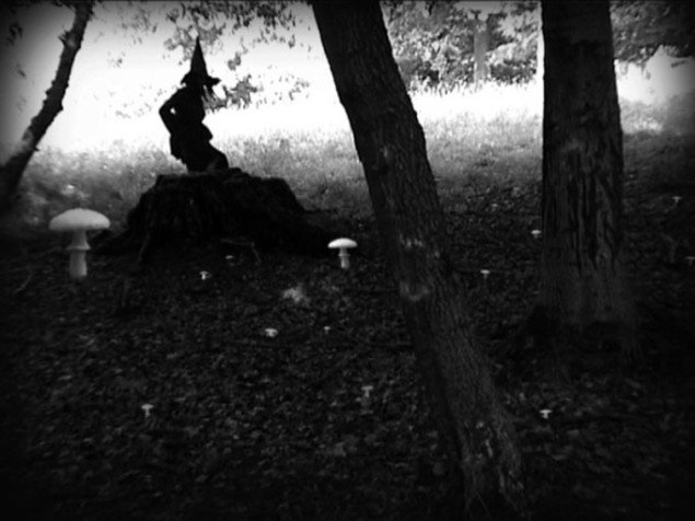 Rikke Benborg: When you see a witch in the forest who is imagining who?