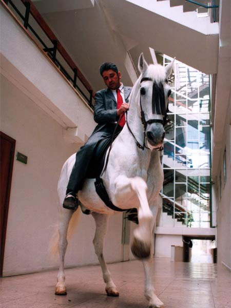 Fernando Sánches Castillo, Architecture for the Horse. 2002