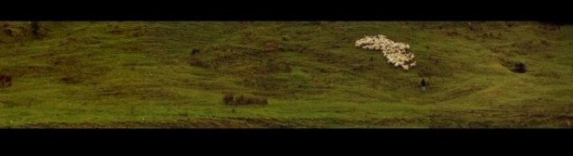 Alex Monteith: Composition for Farmer, Three Dogs and 120 Sheep for Channel Video Installation, 2006. Pressefoto