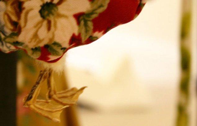 Ællings fødder stikker ud i bunden af tasken. Foto: Bonnie Bay Andersen