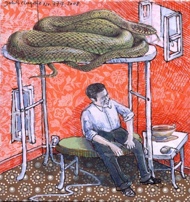Slangen i overkøjen! Pressefoto.