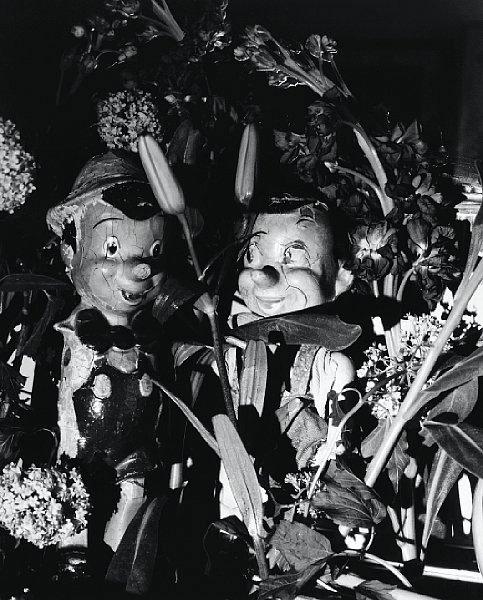 Lilies and Boys, 2006 © Jim Dine; Copy-Dan Billedkunst, København 2009.