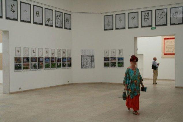 Installations vue i den Belgiske Pavillon. Foto: Sixten Therkildsen