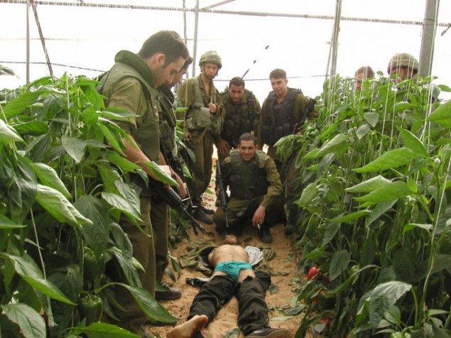 Udstillingen viser også de velkendte men stadig barske krigsbilleder. Pressefoto