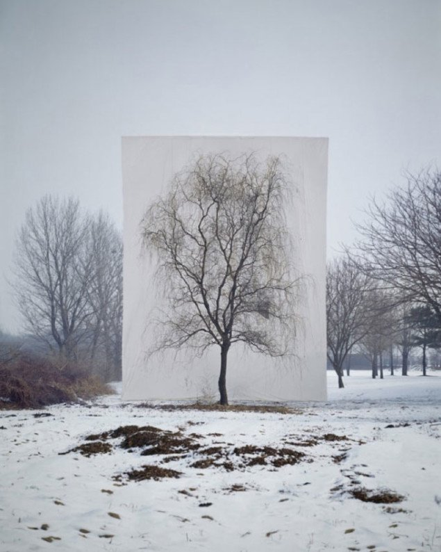 Myoung Ho Lee, Tree #3, 2007. Pressefoto