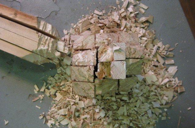 Fældet på bævermetoden. Foto Kasper Lie