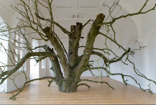 Anya Gallaccio: that open space within, Camden Arts Centre, 2008 © the artist, Courtesy Thomas Dane Gallery, London. Foto: Damian Griffiths