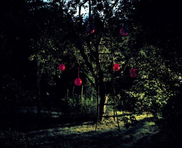 Astrid Kruse Jensen: The Unreachable, 2008