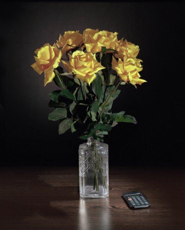 Yellow Roses, Timotheus Tomicek/Kägi, 2009.