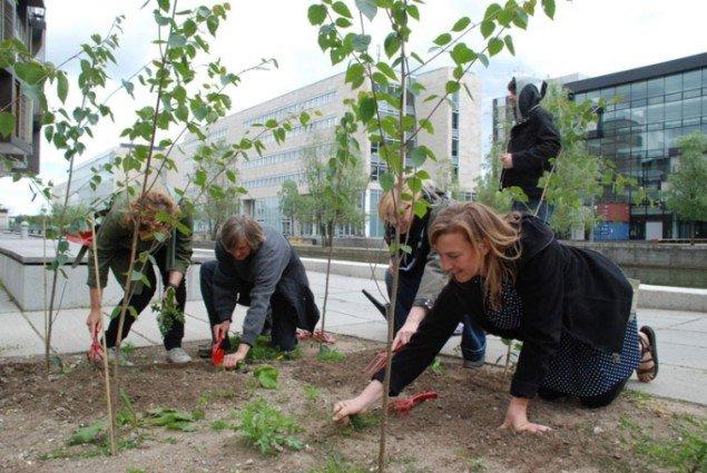Guerilla Gardening. Her ses kurator Charlotte Bagger Brandt (længst til højre) ifærd med at forgrønne Ørestaden . (Foto: Pressefoto / Råderum)