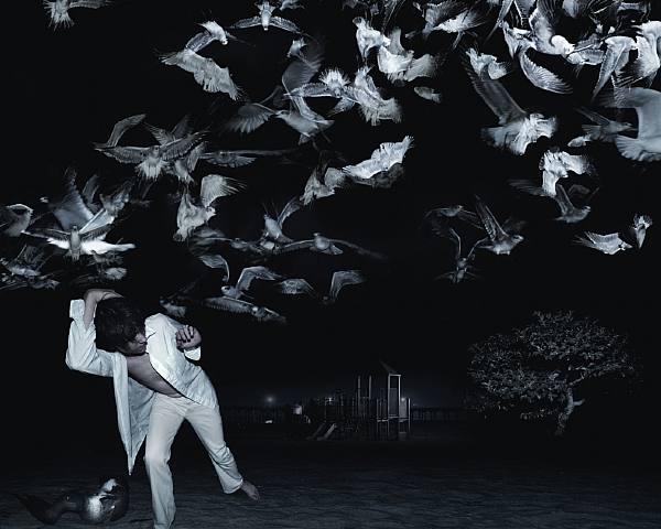 Running from birds af White-Sobieski, Pressefoto