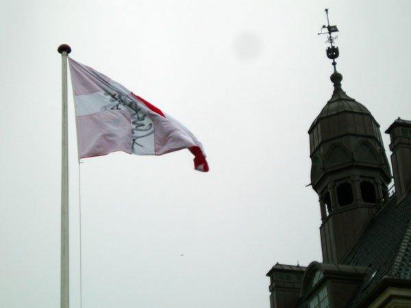 Flaget vejrer over dannevang med ordlyden 'hjemmelavet lortedansk'. Foto: Anne Dyhr.