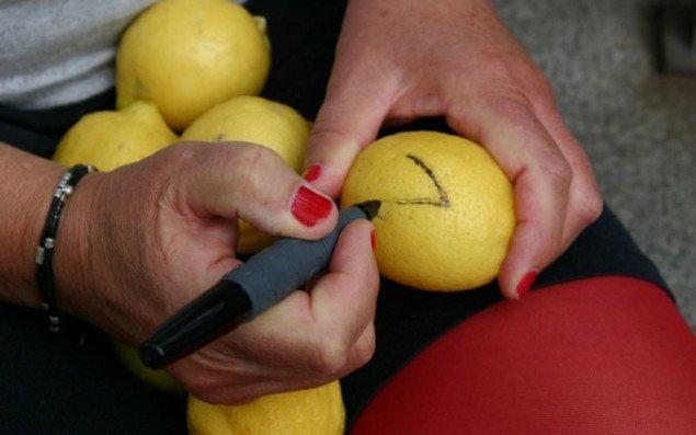 Vær med til at lave kunst-citroner for klimaet