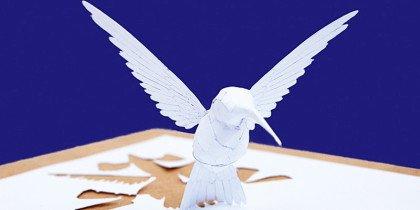 Fuglene er løs på Skovgaard Museet