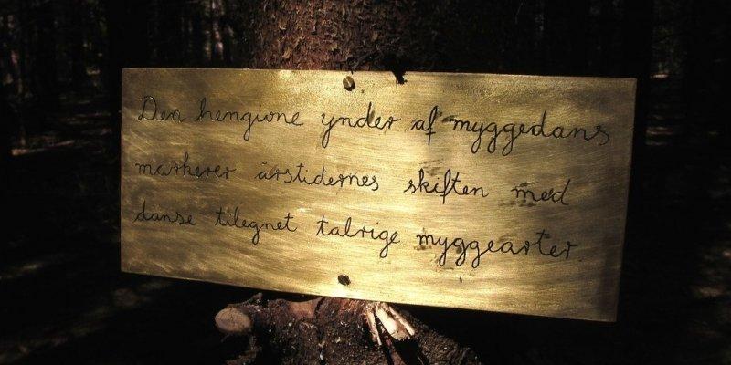 Tilstandsrapport fra Skovsnogen