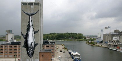 Stor fangst i Odense