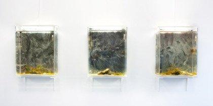 Ugens kunstner – Silas Inoue