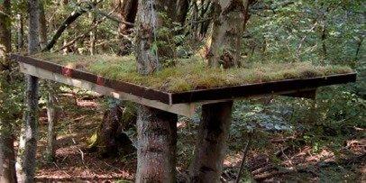 Fortsættelse følger i Skovsnogen Artspace