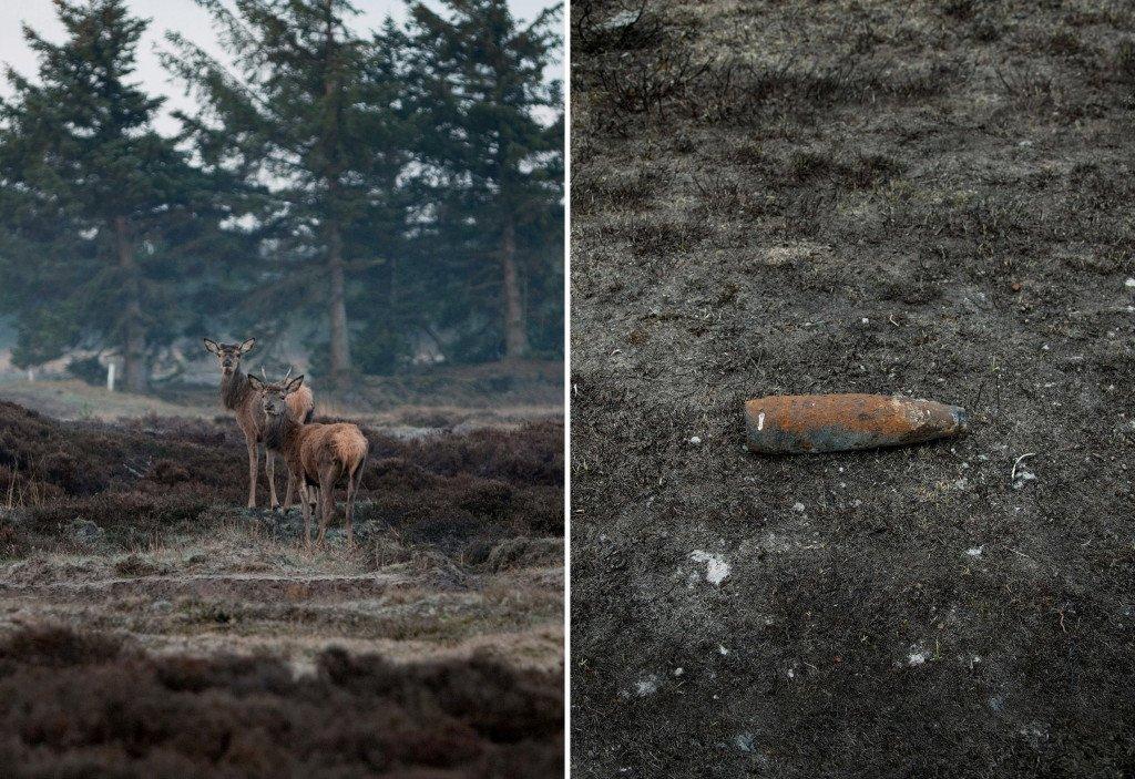 Morten Barker: Kronhjort og Granat