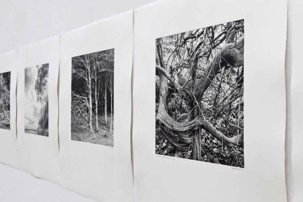 Outskirts, Installationsview, Banja Rathnov Galleri & Kunsthandel. Foto: Stuart McIntyre