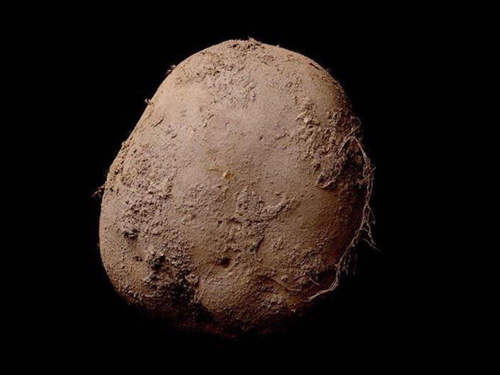 Kevin Abosch: Irish Potatoe. Kilde: independent.co.uk