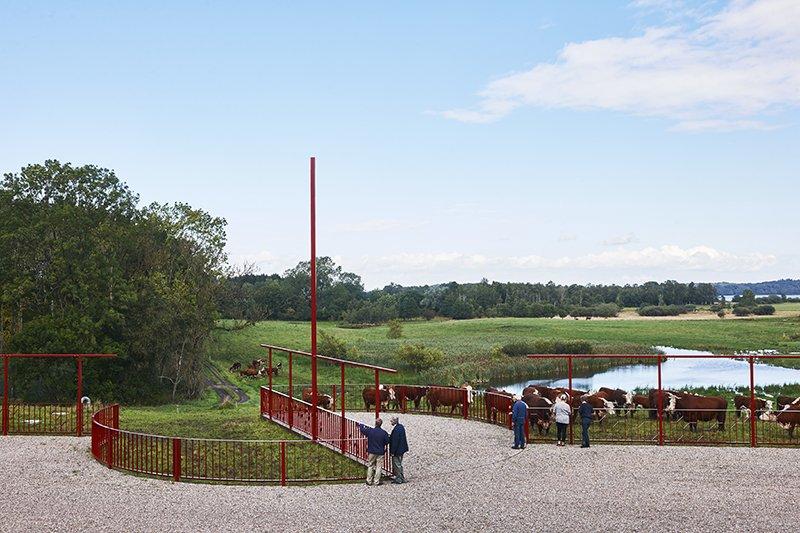 Karin Linds store udendørsværk Rotation af mennesker og landskab og er lavet til Naturstyrelsen i Faaborg i 2015, i samarbejde med Statens Kunstfond. Foto: Torben Petersen