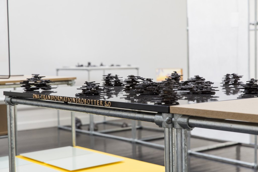 Hein Heinsen: DNA-transformationsrobotter. Foto: Lior Zilberstein