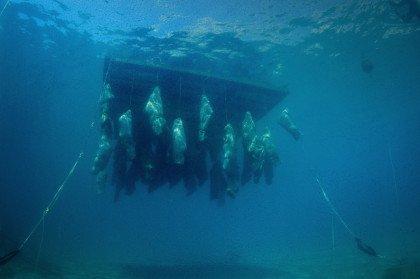 Middelhavet som massegrav