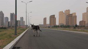 Liu Xiaodong: Painting as Shooting