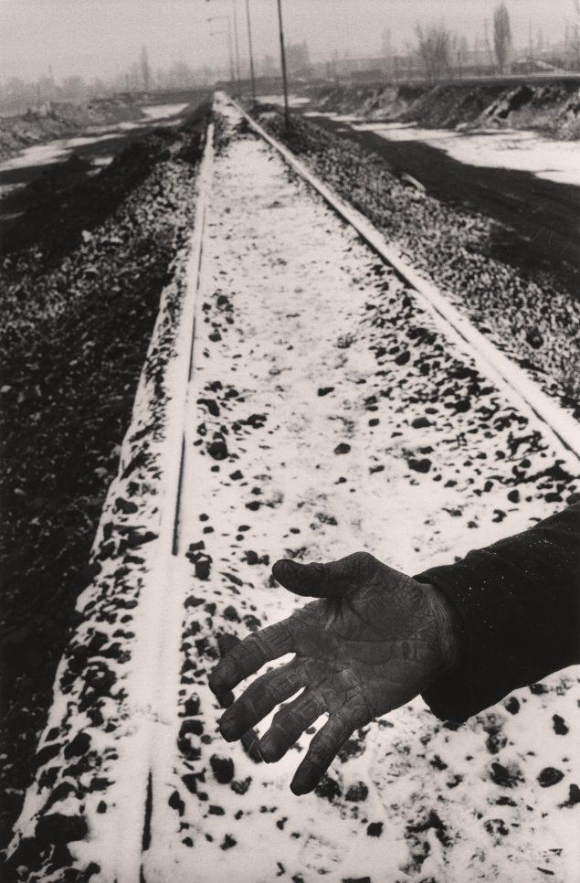 Det lånte lys, 1995.