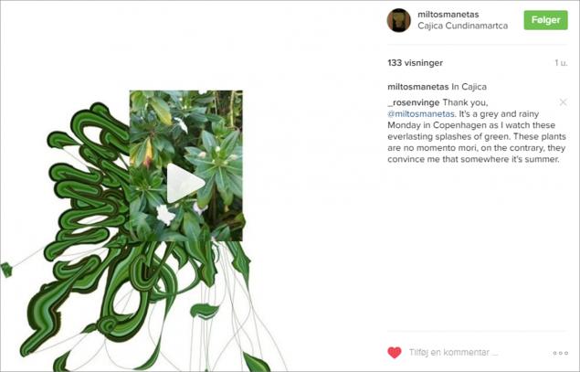 Miltos Manetas (miltosmanetas) på Instagram, Cajica Cundinamartca den 5. oktober 2016.