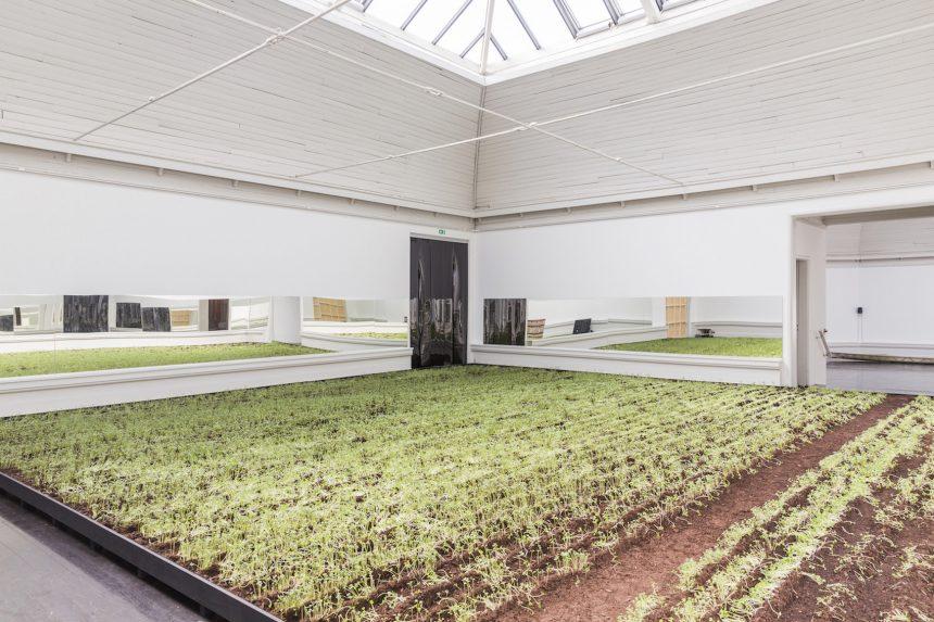 Den Frie som et væksthus for planter og svampe