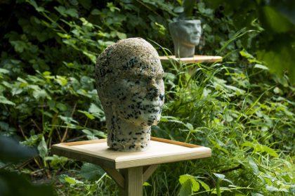 Kunst i vildnisset