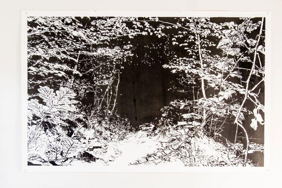 Skovens sanselige dobbelthed