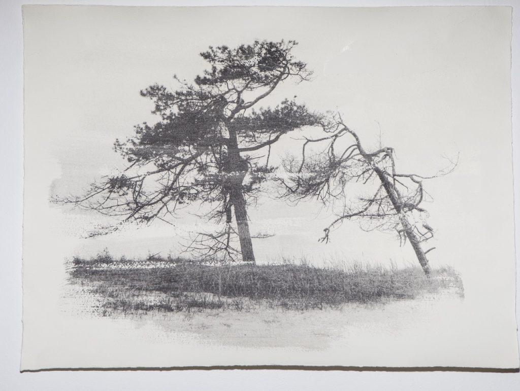Lisa Strömbeck - galleri image
