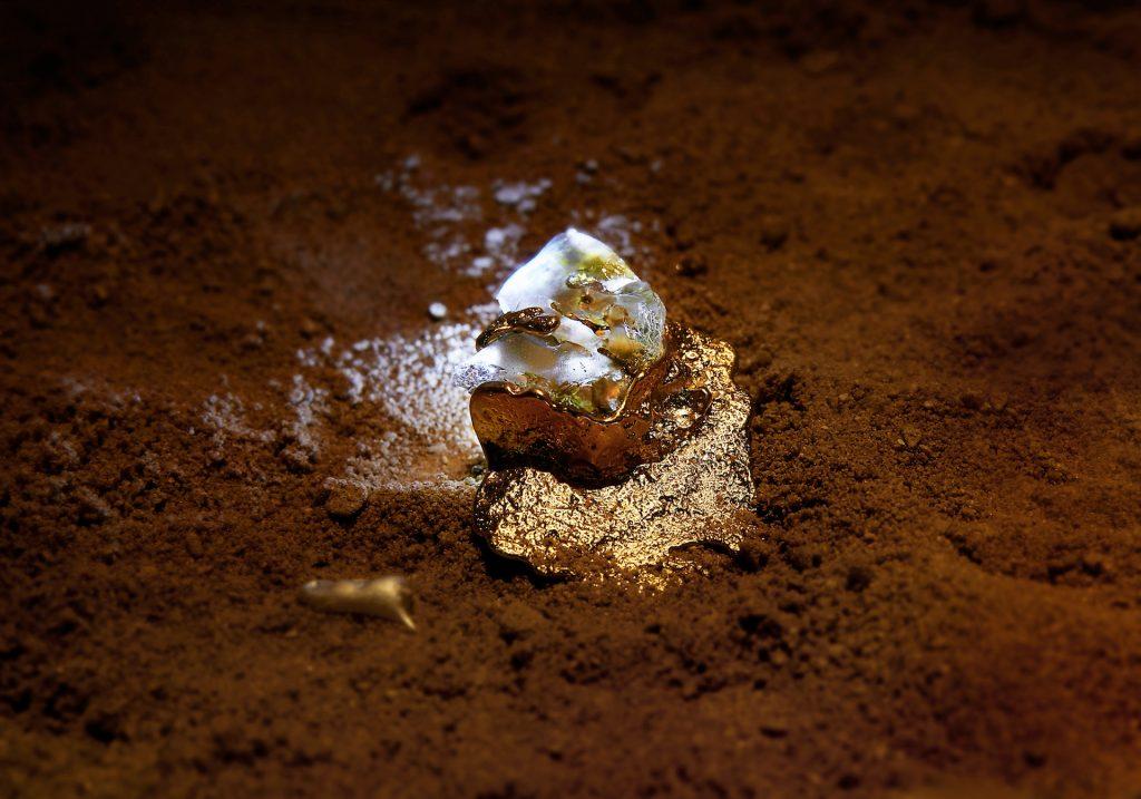 Sommerfuglen, myren og ørkenglasset