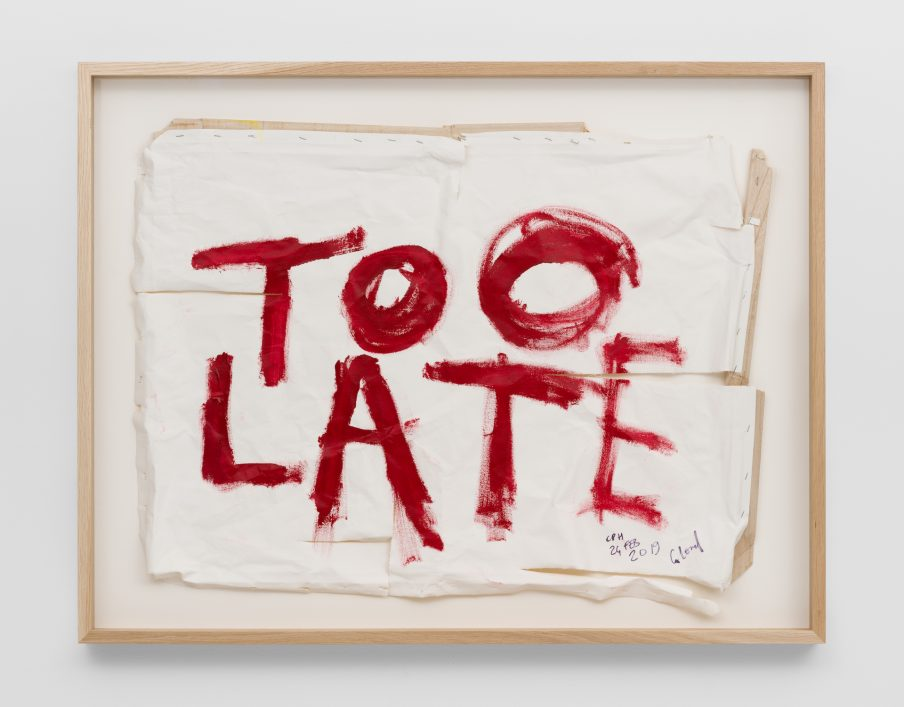 Billedserie: TOO LATE by Thierry Geoffroy